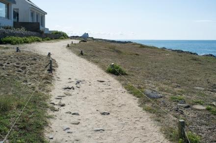 sandy track cropc2